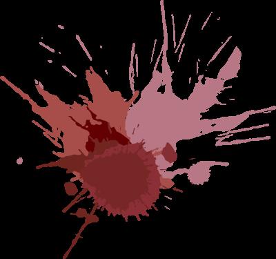 Experience vins   - Le monde du vin de façon conviviale et accessible avec Experience Vins